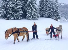 On a recent trip to the French Alps, I tried my hand at equestrian skijoring, which is essentially a horse pulling you on cross-country skis. While it may take some time for the sport to make a comeback at the Winter Games, there are plenty of ways to get your DIY Olympics on in the alpine wonderland that has played host to the Winter Olympics three times.