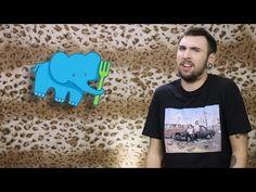 Видео коты 100500