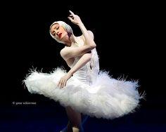 Irma Nioradze in The Dying Swan. Photo (C) Gene Schiavone.