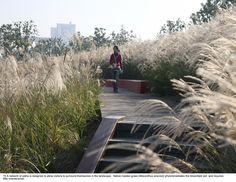 43-turenscape-landscape-architecture-houtan-park « Landscape Architecture Works | Landezine