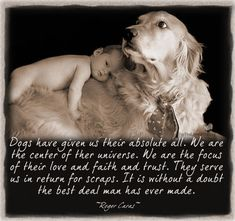 "How true this is…    ""Dogs have given us their absolute all. We are the center of their universe. We are the focus of their love and faith and trust. They serve us in return for scraps. It is without a doubt the best deal man has ever made. "" ~Roger Caras~"