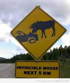 Are you Serious ? Classic Canadian Humour !! Hahaha