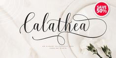Special Offers « MyFonts Calligraphy Fonts, Script Fonts, New Fonts, Wedding Fonts, Calathea, Beautiful Fonts, Modern Fonts, Glyphs, Contemporary Indoor Fountains