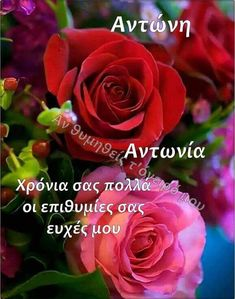 Thank You Happy Birthday, Name Day, Are You Happy, Good Morning, Names, Paracord, Rose, Flowers, Plants