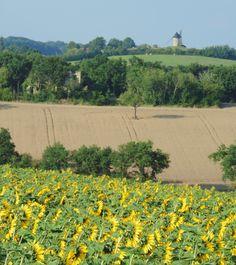 Que notre campagne est belle !!! à 5 minutes d'Agen, en ce mois de juillet des paysages exceptionnel...