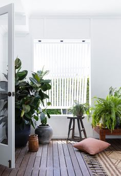 Years of hard work paid off for a Queensland couple whose love for landscaping and flair for interiors turned their beachside abode into a holiday-at-home oasis. Timber Shelves, Timber Deck, Front Deck, Queenslander, Australian Homes, Coastal Homes, White Paints, Indoor Plants, Oasis