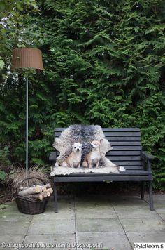 penkki,puutarha,piha,koira,lampaantalja