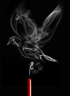 Shape-Shifting Smoke Art