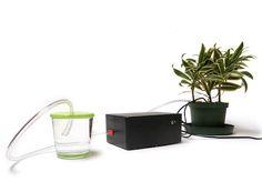 Arduino-powered self-watering plant