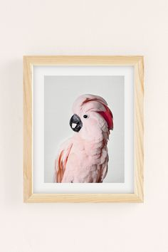 Sisi And Seb Pink Cockatoo Art Print | Urban Outfitters Canada