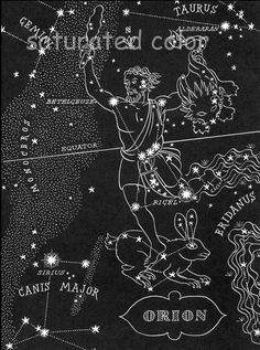 Orion - The Hunter Night Sky Star Chart Map -  Southern Stars Constellations from 1948 Astronomy Textbook. $11.99, via Etsy.