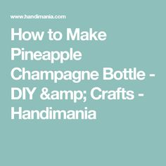 How to Make Pineapple Champagne Bottle - DIY & Crafts - Handimania