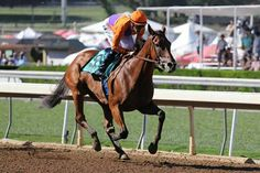 Beholder wins the Zenyatta Stakes! 3rd time in a row, just like Z.