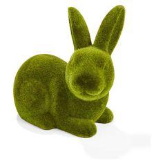 moss Bunny home & Co
