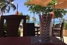 paper straws at villa taina