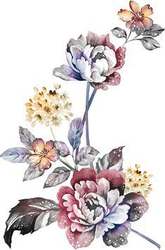 Vintage Botanical Prints, Vintage Art Prints, Watercolor Flowers, Watercolor Art, Flora Flowers, Ornaments Design, Album Design, Flower Pictures, Floral Motif