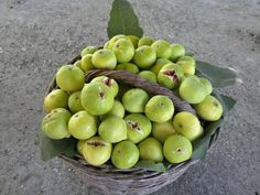 Palestinian Figs Food Decoration, Exotic Fruit, Delicious Fruit, Fruits And Vegetables, Pear, Berries, Spices, Cooking, Gaza Strip