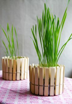 Upcycle & Repurpose: Ideas for Clothespins — A Cultivated Nest