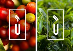 The Click Design Consultants  is the studio responsible for the visual identity, packaging of Union Yard