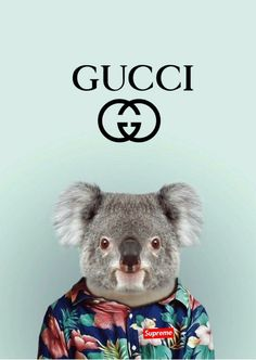 Check out this awesome collection of Supreme Gucci wallpapers, with 27 Supreme Gucci wallpaper pictures for your desktop, phone or tablet. Gucci Wallpaper Iphone, Supreme Iphone Wallpaper, Lit Wallpaper, Iphone Wallpapers, Blue Aesthetic Pastel, Hypebeast Wallpaper, Butterfly Art, Background Pictures, Beetlejuice