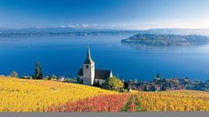 vineyards, Three-Lake-Country ~ view from Twann looking over the Bielersee, Switzerland one of the most beautiful places ever. Places Around The World, Oh The Places You'll Go, Places To Travel, Places To Visit, Around The Worlds, Travel Destinations, Beautiful World, Beautiful Places, Wonderful Places