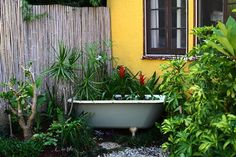 Use an old claw foot bathtub as a planter.