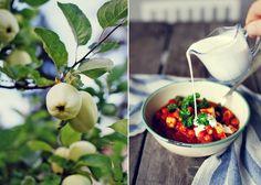 Kikärtsgryta, soppa och fröknäcke från evelinas ekologiska