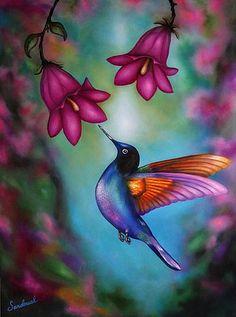 Obras de Diana Sandoval       Gracias porsu tiempo en visitarmis obras Artísticas !    Aquí puedo compartir con ustedes part... Hummingbird Drawing, Hummingbird Pictures, Pencil Art Drawings, Bird Drawings, Bird Artwork, African Artists, Watercolor Bird, Watercolor Ideas, Color Pencil Art