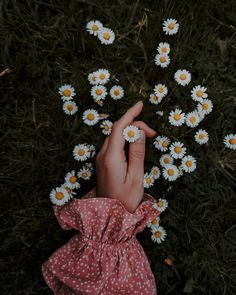 Love little daisies popping up all over the garden🌿 . When I mow the lawn I tend to leave the patches where the daisies and buttercups are,… Hand Photography, Aesthetic Photography Nature, Tumblr Photography, Creative Photography, Beautiful Bouquet Of Flowers, Beautiful Flowers Wallpapers, Flowers Nature, Flower Aesthetic, Aesthetic Images
