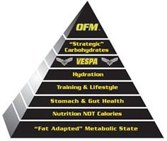 """Fat-Adapted"" Metabolic State - VESPA ---the proper term is Nutritional Ketosis (NK) and should not be mistaken for Starvation Ketosis or Ketoacidosis. Via NK the human body makes a profound shift toward burning ""fat as fuel"" without catabolizing muscle protein for glucose as is the case for Starvation Ketosis (OFM athletes actually gain lean body mass!)."