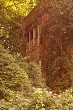 Old insane asylum, Kings Park