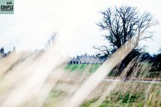 Through the grasses www.couple..ie Grasses, Couple Photography, Waterfall, Country Roads, Weddings, Couples, House, Outdoor, Outdoors