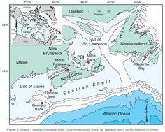 Quepos, Continental Shelf, Supermarket, New Brunswick, Atlantic Ocean, Newfoundland, Maine, Geology, Minerals