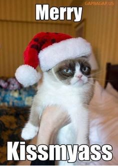 Funny Merry Christmas Meme ft. Grumpy Cat