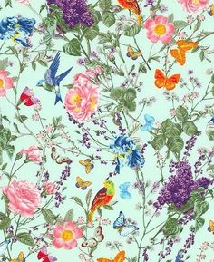 Floral Butterfly Bird Fabric At the Conservatory Michael Miller Designer Cotton