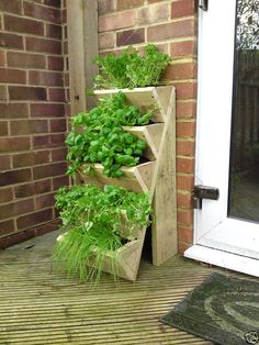 Would love to have one of these for herbs!