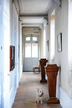 Une veranda aménagée dans les tons gris et un tapis pop qui reveille ...