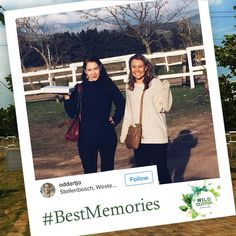 Making great memories? Tell us about your Wild Clover experience by posting a photo on Instagram. Hashtag #WildClover and #BestMemories. - We look forward to seeing you! Instagram Hashtag, Looking Forward To Seeing You, Great Memories, Polaroid Film, Activities