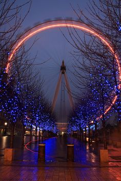 Night time along the River Thames by Gail Johnson, via Flickr