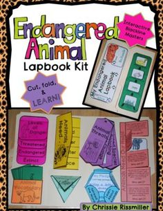 Food Chains And Webs Worksheet Answers Endangered Species Blackfooted Ferret  Worksheets Endangered  Math Worksheet Grade 4 with Bohr Diagram Worksheet Word Endangered Animals Lapbook Interactive Kit From Chrissie Rissmiller On  Teachersnotebookcom   Pages Virtual Cell Worksheet Answers Word