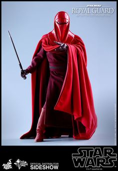 Star Wars Royal Guard Sixth Scale Figure by Hot Toys