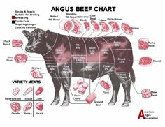 Angus cattle are known for the fine marbling texture that their meat possess. Also, the can be given a short amount of days on feed and the meat can repeatedly be Prime and Choice grades.