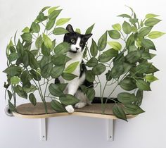 Floating Cat Wall Shelves from meowingtons. Use code LOVECATS for 55% off. #CatFurniture