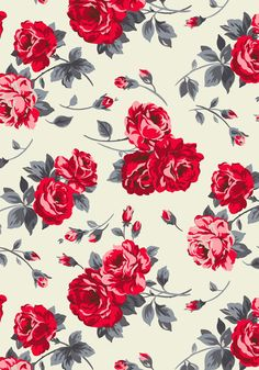 Ardingly Rose | Vintage-inspired roses in chic modern colours make this the perfect print for party season! | Cath Kidston Christmas 2016 |