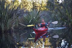 Best things to do Franz Josef, West Coast - Glacier Country Kayak Tours