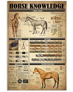 Survival Life Hacks, Survival Skills, Camping Survival, Farm Animals, Animals And Pets, Horse Posters, All About Horses, Horse Tips, Hobby Farms