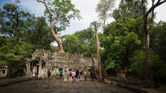 3 days, siem reap to siem reap Paris Travel, Travel Usa, California Activities, Photography New York, Videos Mexico, Travel Words, Airplane Travel, Travel Outfit Summer, Video Games For Kids