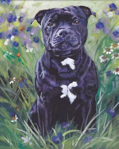 Staffordshire bull terrier giclee CANVAS print of by TheDogLover