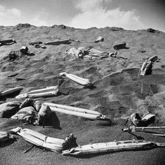 Battle Of Iwo Jima Stock Pictures, Royalty-free Photos & Images Life Pictures, Stock Pictures, Iwo Jima Photo, Battle Of Iwo Jima, Once A Marine, Us Marines, D Day, Usmc, Historical Photos