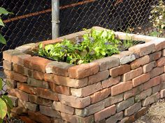 Image result for dry stack brick raised bed